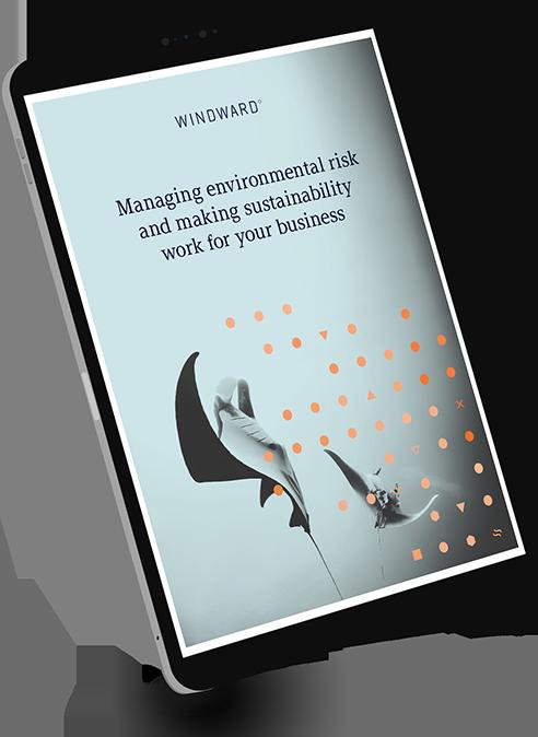 Managing Environmental Risk E-book